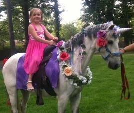 Unicorn Pony Party Rental Traveling Birthday Events